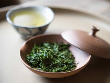 Sencha Green Tea Overview